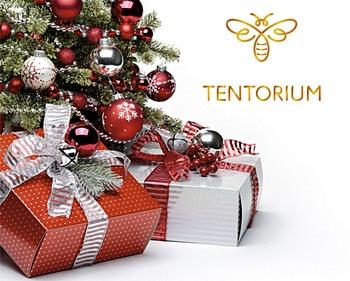Для миллионов людей Рождество - самый любимый, долгожданный и красивый праздник
