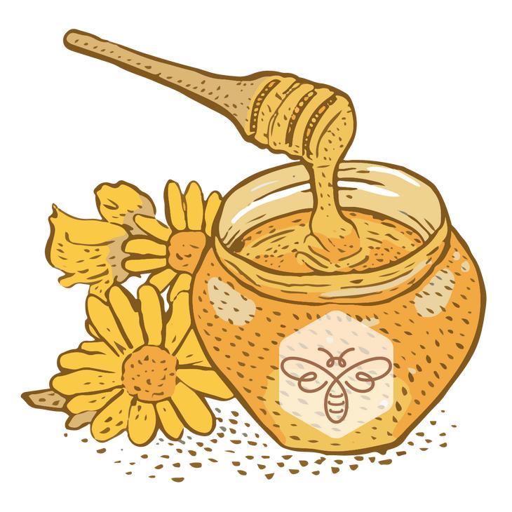 Одна из важных и серьёзных задач для каждого пчеловода — правильно выбрать срок откачки мёда. После 14 августа — народного праздника Медового спаса — компания ТЕНТОРИУМ® начинает приём мёда свежего урожая и продуктов пчеловодства в неограниченных количествах.