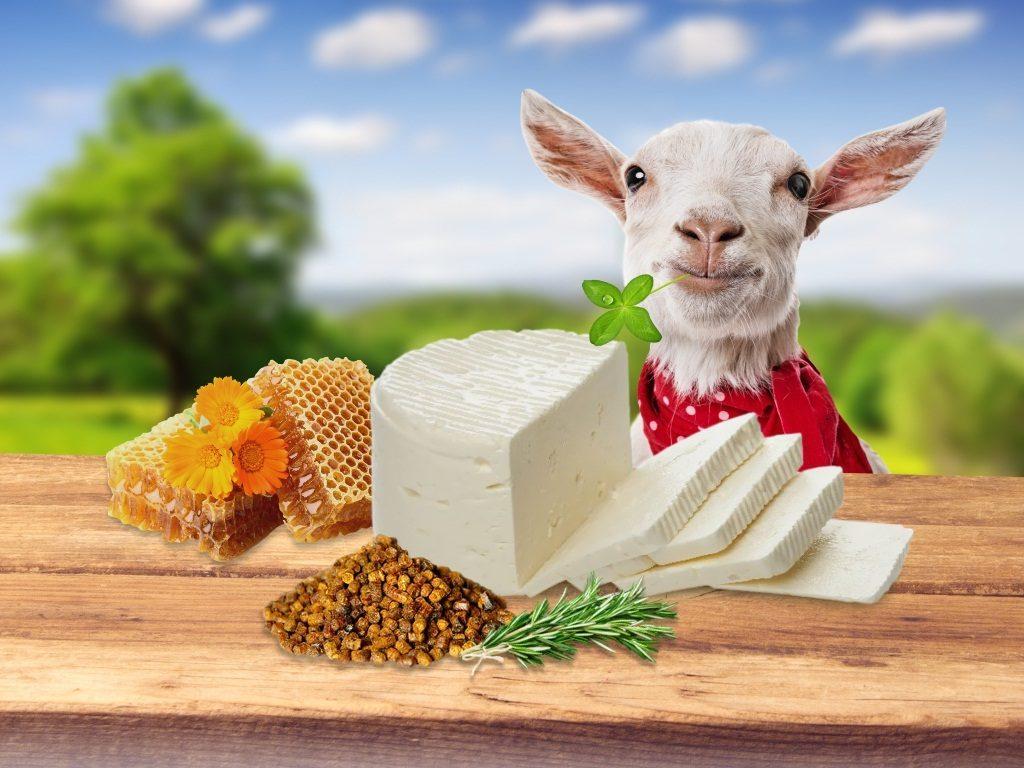 Фермерский сыр ТЕНТОРИУМ® соответствует требованиям безопасности и качества