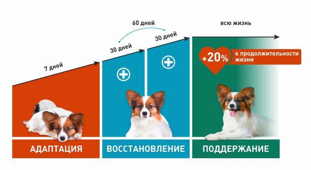 Корм сухой RA Dog гипоаллергенный Индейка с картофелем 0,95 кг