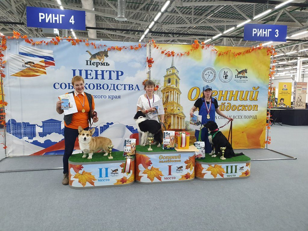 ТЕНТОРИУМ® — партнёр престижной выставки собак всех пород