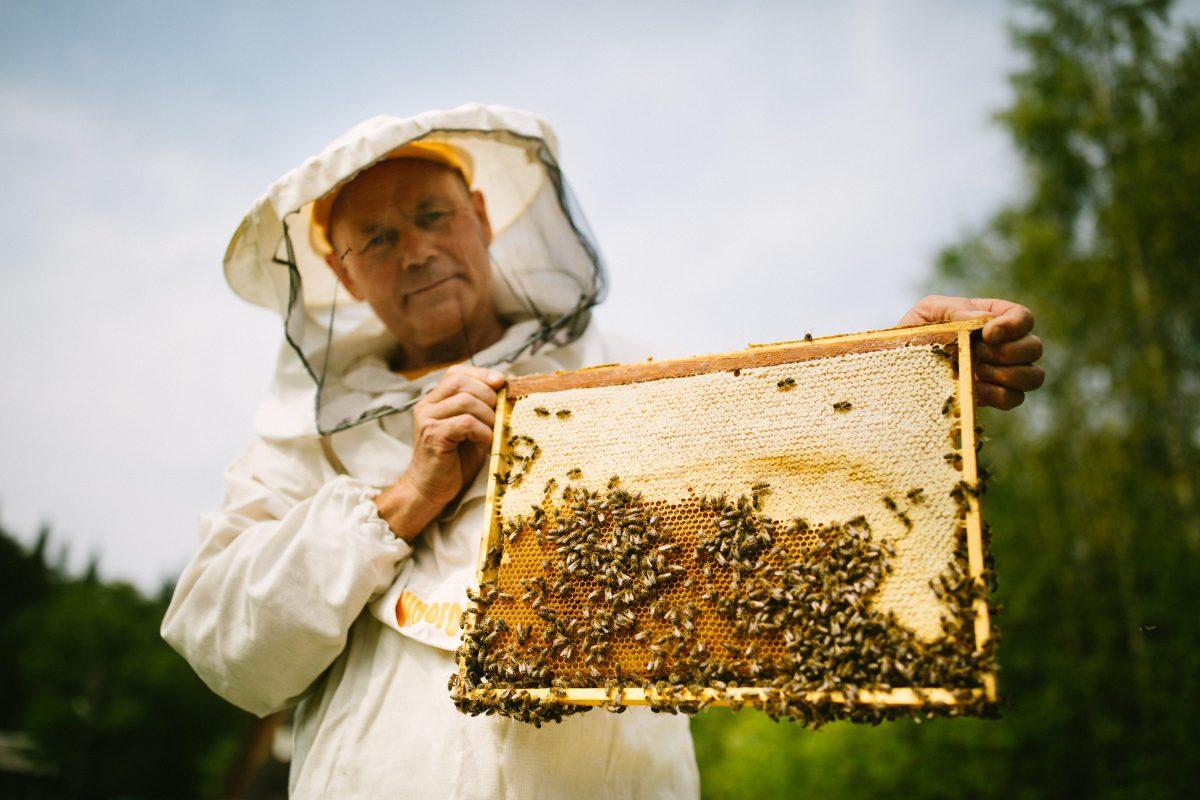 Круглый стол в Совете Федерации: ТЕНТОРИУМ® предложил меры по поддержке российских пчеловодов